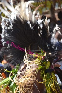 Photo © Pauleen Cass 2012 taken in Alotau, Milne Bay Province. This feathered headdress is not dissimilar to the ones described in The Mountain.